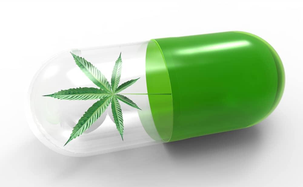 Cannabis à but thérapeutique